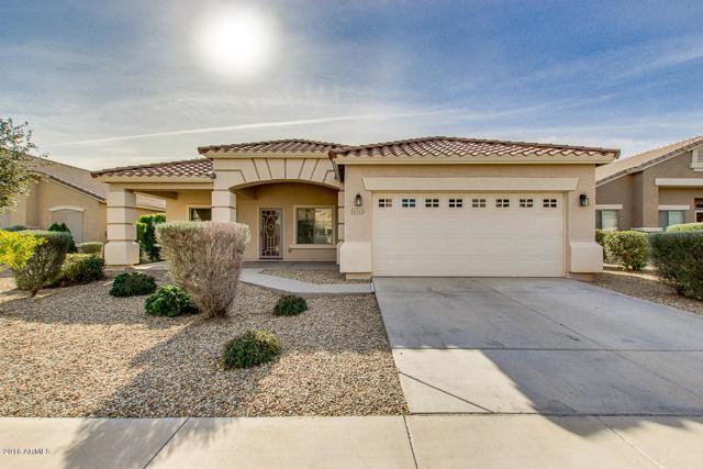 16543 W Jackson Street, Goodyear, AZ 85338 (MLS #5813563) :: Keller Williams Realty Phoenix