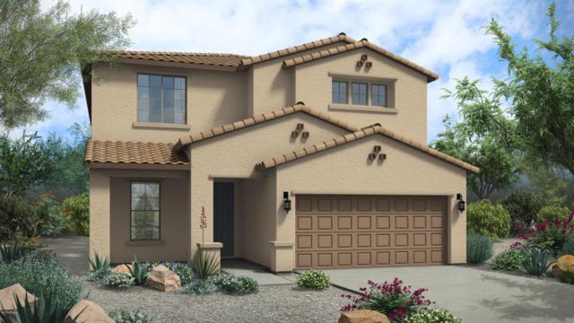 41439 N Calle Del Sol, San Tan Valley, AZ 85140 (MLS #5813682) :: Scott Gaertner Group