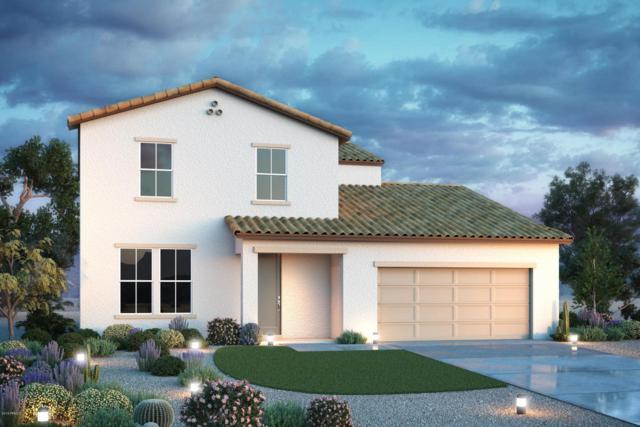 1753 E Luna Blanca Way, San Tan Valley, AZ 85140 (MLS #5813702) :: Scott Gaertner Group