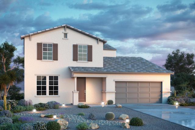 41472 N Cielito Linda Way, San Tan Valley, AZ 85140 (MLS #5813724) :: Scott Gaertner Group