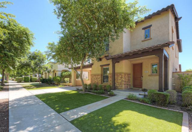 20831 W Wycliff Drive, Buckeye, AZ 85396 (MLS #5813930) :: Occasio Realty