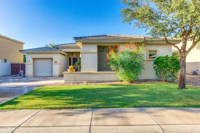 854 E Sagittarius Place, Chandler, AZ 85249 (MLS #5814074) :: Keller Williams Realty Phoenix