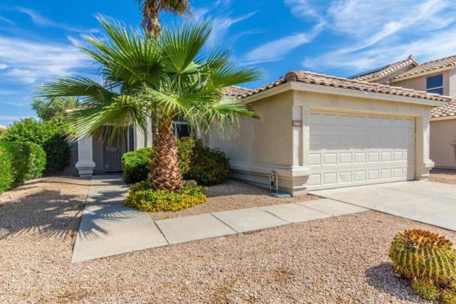 7442 W Louise Drive, Glendale, AZ 85310 (MLS #5814112) :: The Garcia Group @ My Home Group
