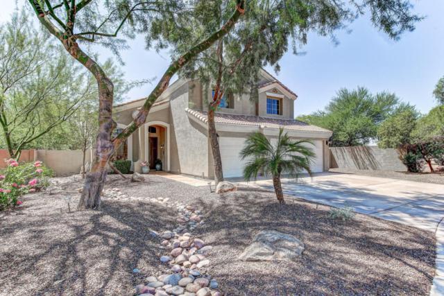 3221 E Macaw Court, Gilbert, AZ 85297 (MLS #5814189) :: Brett Tanner Home Selling Team