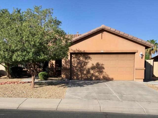 16333 N 152ND Avenue, Surprise, AZ 85374 (MLS #5814233) :: Gilbert Arizona Realty