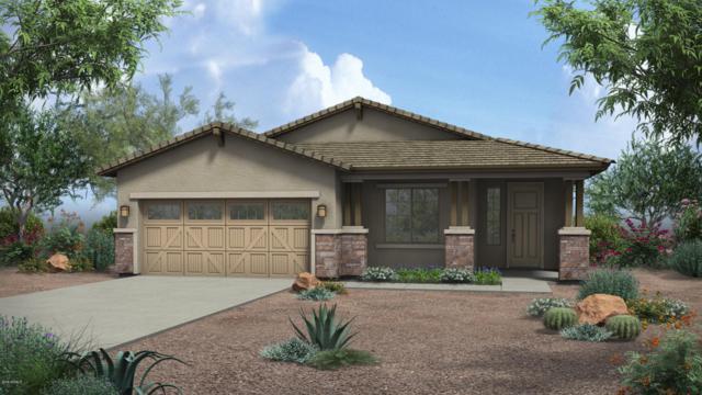 20630 W Delaney Drive, Buckeye, AZ 85396 (MLS #5814291) :: The Jesse Herfel Real Estate Group