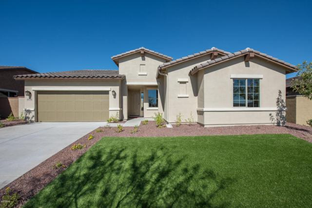 20538 W Park Meadows Drive, Buckeye, AZ 85396 (MLS #5814327) :: Kepple Real Estate Group