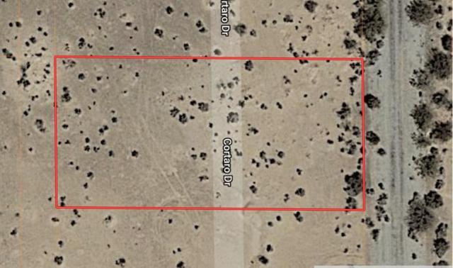 3020 N Cortaro Drive, Eloy, AZ 85131 (MLS #5814413) :: Brett Tanner Home Selling Team