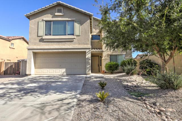 40782 W Thornberry Lane, Maricopa, AZ 85138 (MLS #5814426) :: The Everest Team at My Home Group