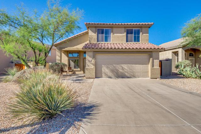 4518 E Cox Court, Cave Creek, AZ 85331 (MLS #5814644) :: Occasio Realty