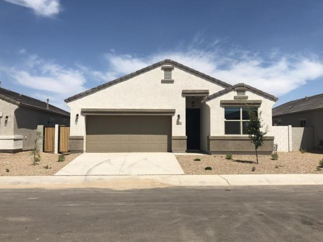 41296 W Jenna Drive, Maricopa, AZ 85138 (MLS #5814691) :: Yost Realty Group at RE/MAX Casa Grande