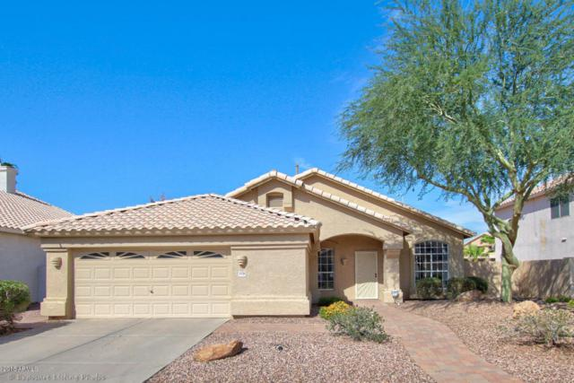 3174 W Tyson Place, Chandler, AZ 85226 (MLS #5814695) :: The Everest Team at My Home Group