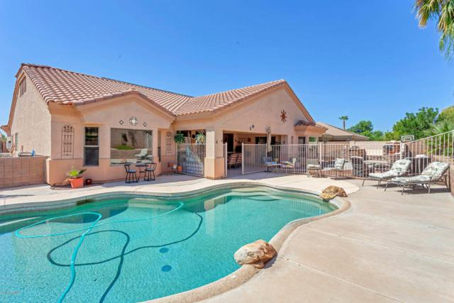 8756 W Maui Lane, Peoria, AZ 85381 (MLS #5814793) :: Occasio Realty