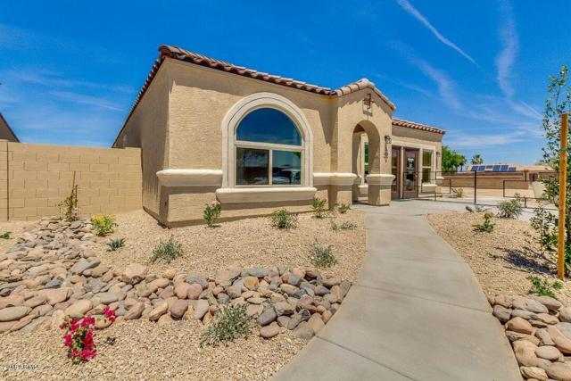 41958 W Manderas Lane, Maricopa, AZ 85138 (MLS #5814879) :: Lux Home Group at  Keller Williams Realty Phoenix
