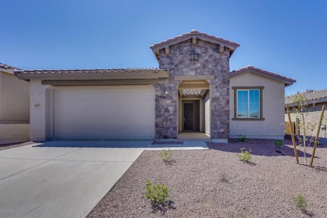 10651 W Eucalyptus Road, Peoria, AZ 85383 (MLS #5815008) :: The Results Group