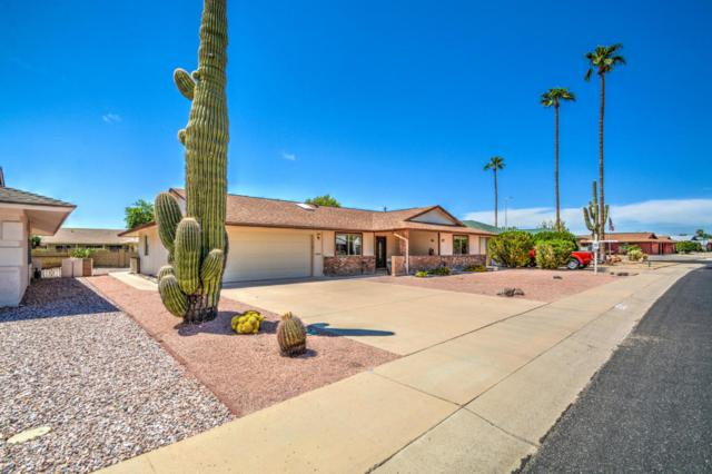 10904 W Tropicana Circle, Sun City, AZ 85351 (MLS #5815067) :: Keller Williams Realty Phoenix