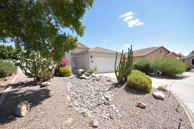 8861 N 66TH Drive, Glendale, AZ 85302 (MLS #5815126) :: The Garcia Group