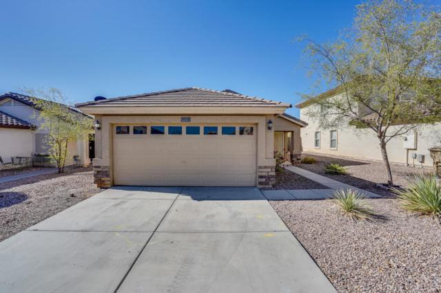 22315 W Morning Glory Street, Buckeye, AZ 85326 (MLS #5815176) :: The W Group