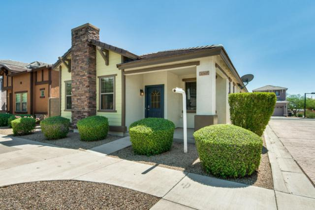 4369 E Selena Drive, Phoenix, AZ 85050 (MLS #5815197) :: The Everest Team at My Home Group