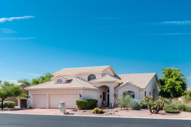 9301 E Diamond Drive, Sun Lakes, AZ 85248 (MLS #5815208) :: Yost Realty Group at RE/MAX Casa Grande