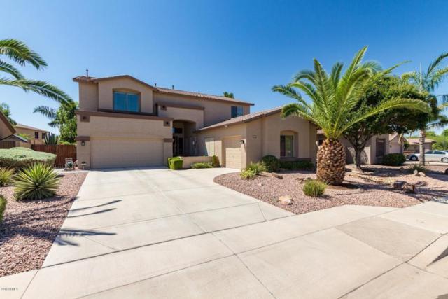 10437 E Los Lagos Vista Avenue, Mesa, AZ 85209 (MLS #5815323) :: The Jesse Herfel Real Estate Group