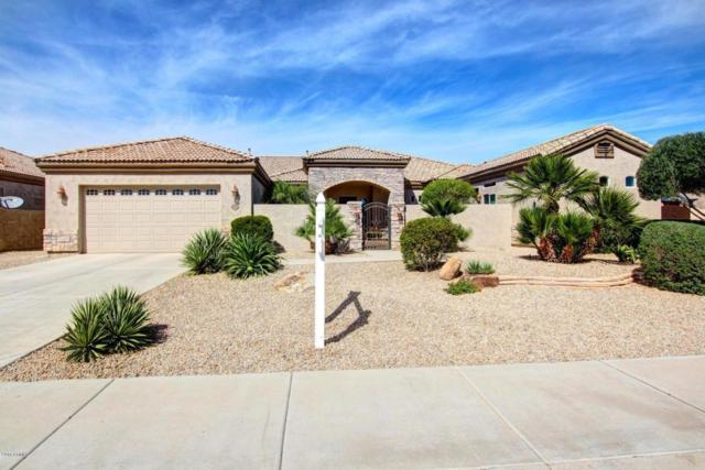 14712 W Blackgold Court, Sun City West, AZ 85375 (MLS #5815353) :: The W Group
