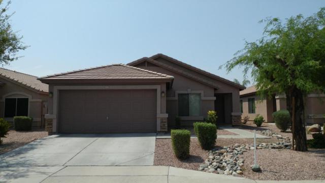 13727 W Rovey Avenue, Litchfield Park, AZ 85340 (MLS #5815458) :: The W Group