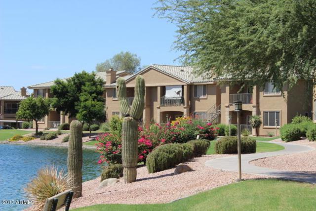 16013 S Desert Foothills Parkway #1170, Phoenix, AZ 85048 (MLS #5815501) :: Brett Tanner Home Selling Team