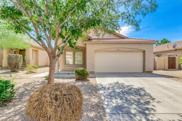 10157 E Kilarea Avenue, Mesa, AZ 85209 (MLS #5815561) :: The Jesse Herfel Real Estate Group