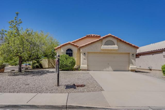 9632 W Tonopah Drive, Peoria, AZ 85382 (MLS #5815570) :: Sibbach Team - Realty One Group