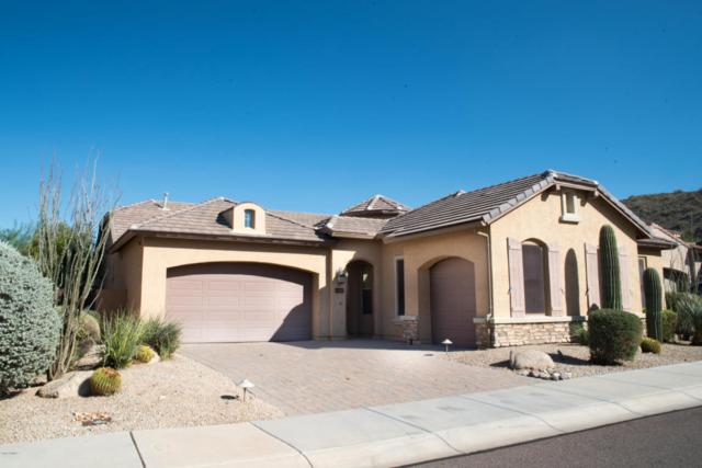 26135 N 85TH Lane, Peoria, AZ 85383 (MLS #5815732) :: The Laughton Team