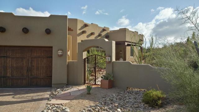 11325 E Blue Wash Road, Cave Creek, AZ 85331 (MLS #5815792) :: Brett Tanner Home Selling Team