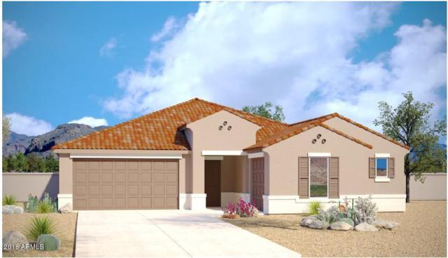 30866 N 126TH Drive, Peoria, AZ 85383 (MLS #5815828) :: Occasio Realty