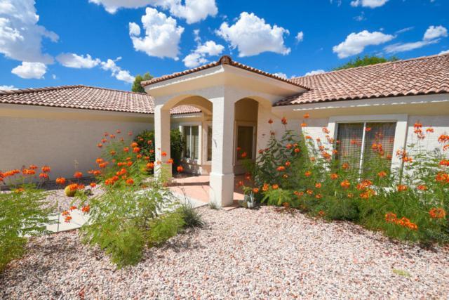 950 Arroyo Lane, Wickenburg, AZ 85390 (MLS #5815893) :: Gilbert Arizona Realty