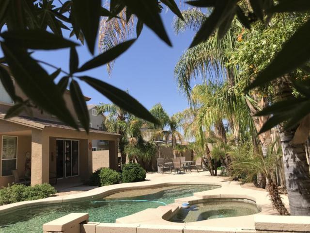 13544 W San Juan Avenue, Litchfield Park, AZ 85340 (MLS #5815945) :: Occasio Realty