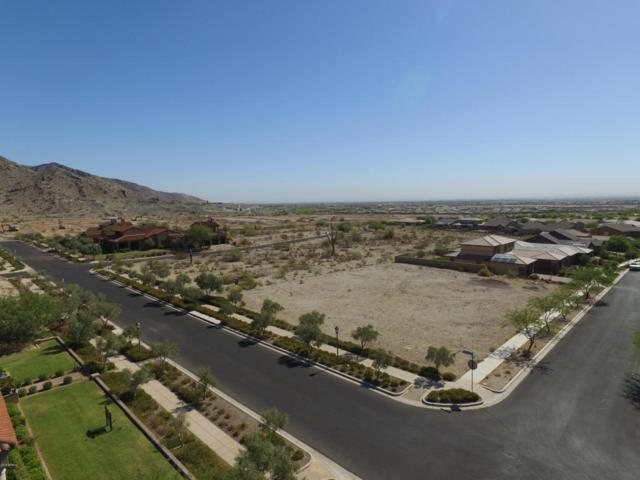 4549 N Regent Street, Buckeye, AZ 85396 (MLS #5816014) :: Brett Tanner Home Selling Team
