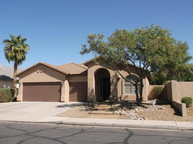 2842 E Tulsa Street, Chandler, AZ 85225 (MLS #5816018) :: The W Group