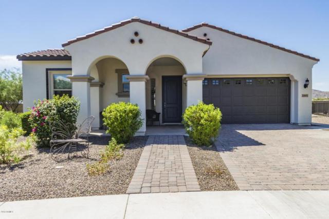 20601 W Minnezona Avenue, Buckeye, AZ 85396 (MLS #5816137) :: The Garcia Group
