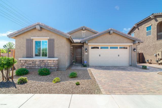 297 E Canyon Way, Chandler, AZ 85249 (MLS #5816151) :: Gilbert Arizona Realty