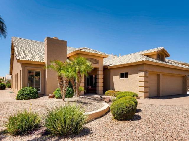 9023 E Cedar Waxwing Drive, Sun Lakes, AZ 85248 (MLS #5816153) :: Occasio Realty