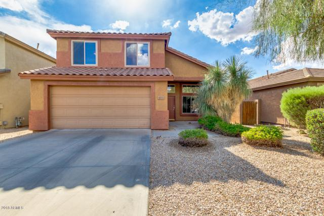 33612 N 46TH Place, Cave Creek, AZ 85331 (MLS #5816174) :: The Laughton Team