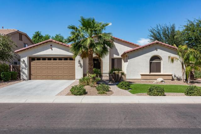 2480 E Donato Drive, Gilbert, AZ 85298 (MLS #5816204) :: Occasio Realty