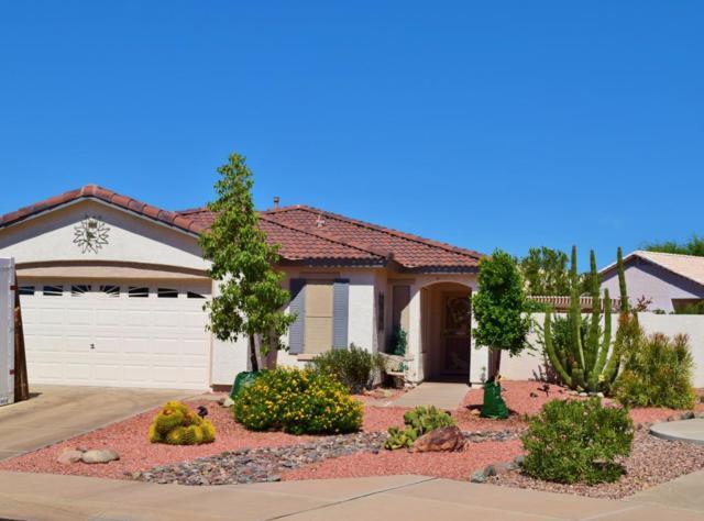 11032 W Wikieup Lane, Sun City, AZ 85373 (MLS #5816213) :: The W Group