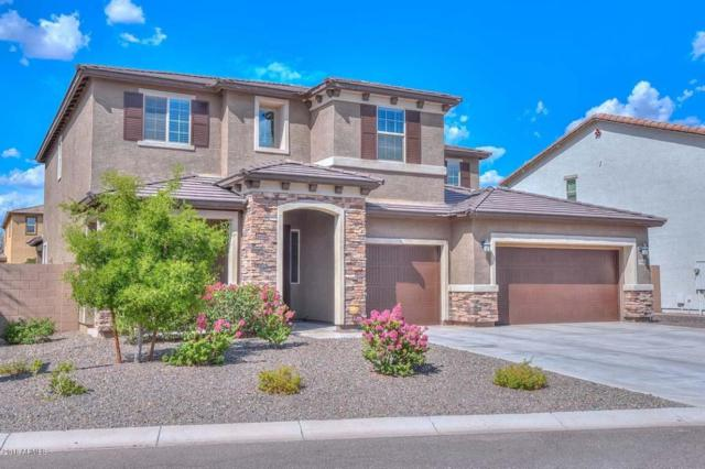 7988 W Molly Drive, Peoria, AZ 85383 (MLS #5816252) :: The Garcia Group @ My Home Group