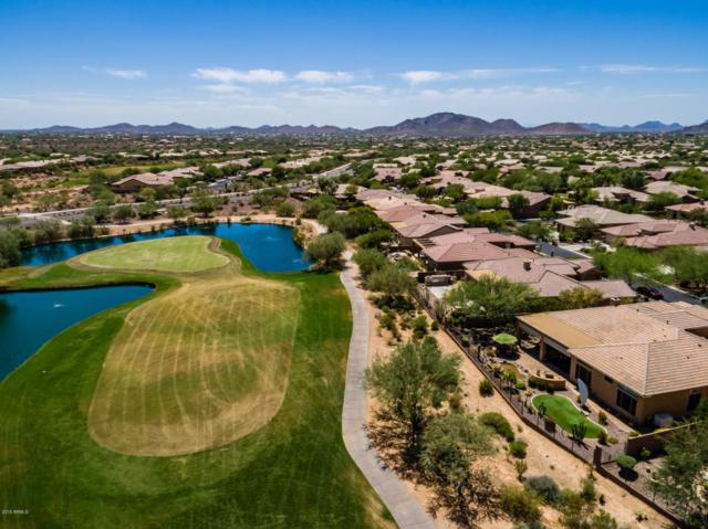 1578 W Laurel Greens Court, Anthem, AZ 85086 (MLS #5816275) :: Occasio Realty