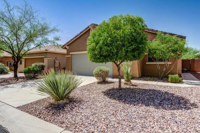 40138 N Bell Meadow Court, Anthem, AZ 85086 (MLS #5816295) :: Occasio Realty