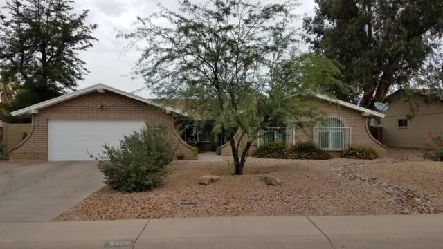 Phoenix, AZ 85032 :: Keller Williams Realty Phoenix