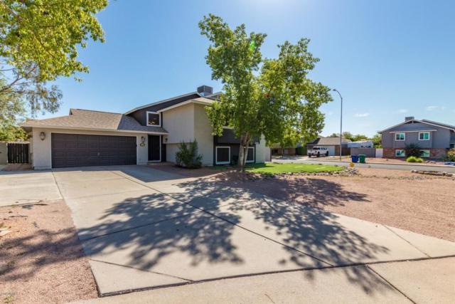 3838 E Dewberry Avenue, Mesa, AZ 85206 (MLS #5816341) :: The W Group