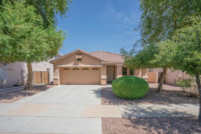 677 S 153RD Lane, Goodyear, AZ 85338 (MLS #5816380) :: Occasio Realty