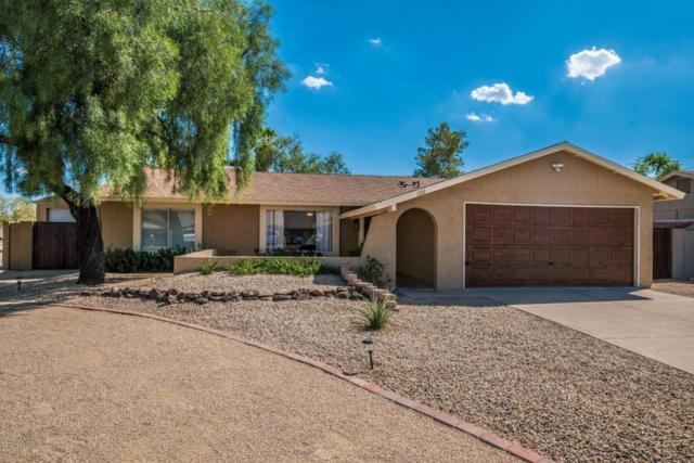 1101 W Runion Drive, Phoenix, AZ 85027 (MLS #5816415) :: Gilbert Arizona Realty